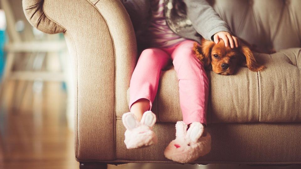 beneficios para los niños de crecer con perros