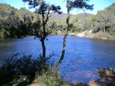 llac-petit-2010