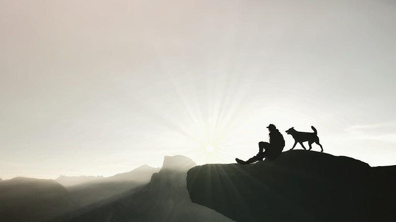 normativa perros montaña y parques