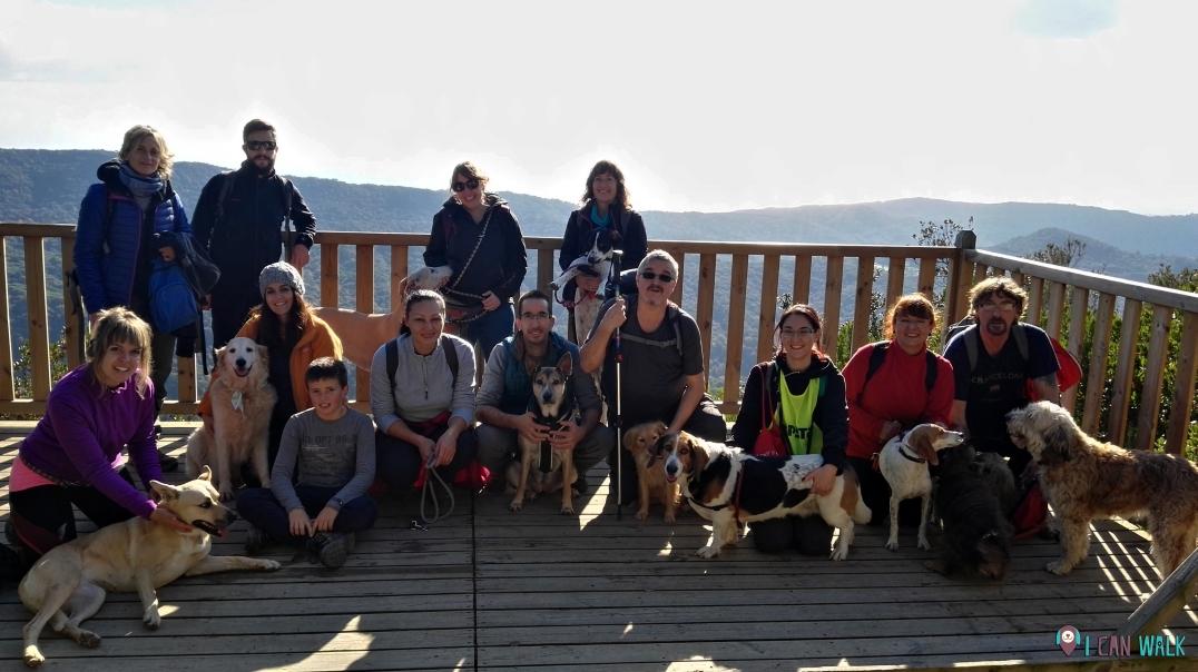 Excursión canina en grupo montnegre