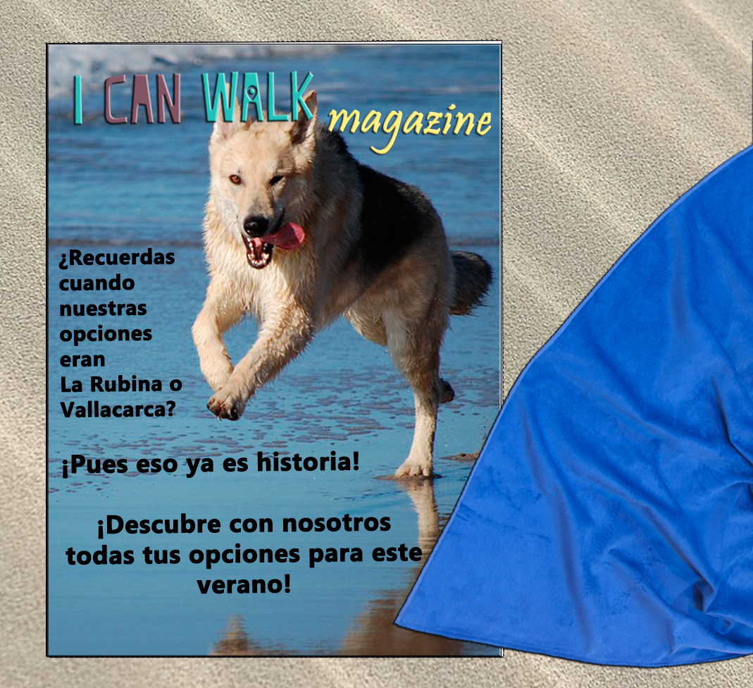 REVISTA Playas