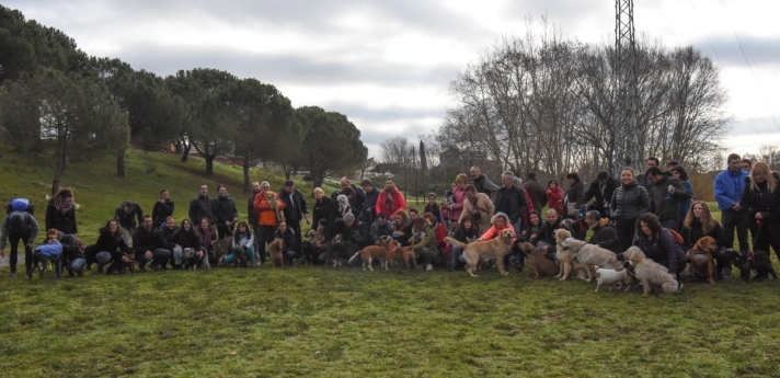 Senderismo y ocio con perros, excursiones caninas en grupo. Sant Quirze del Vallès