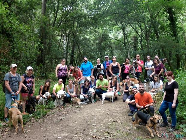 2a Edición: Excursión con Clase de Educación Canina con Kipeek, 17.6.18