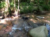 zona dónde cruzamos el río