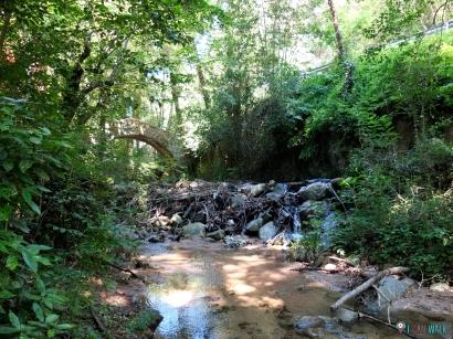 Zona de río