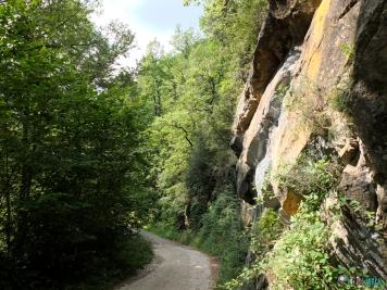camino antes del sendero