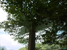 poste que indica la entrada al sendero
