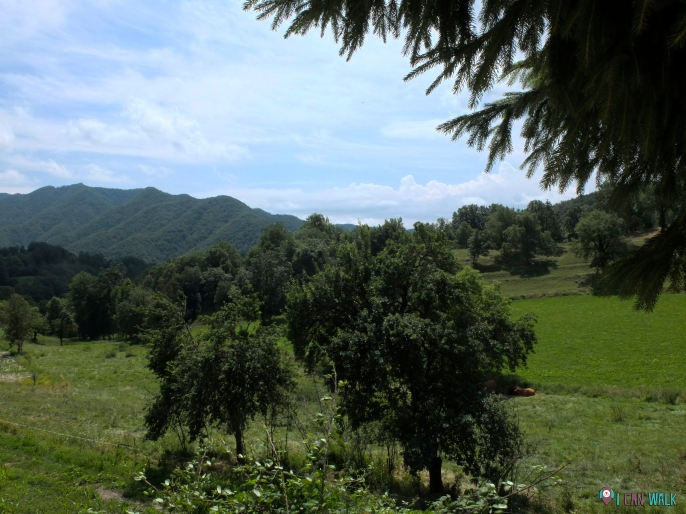 """vistas delante de """"casa de la Vila"""""""