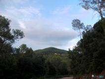 vistas desde la carretera