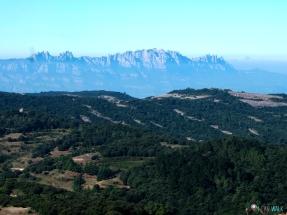 senderismo con perros benéfica al Montcau, Montserrat