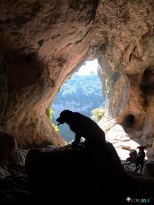 senderismo con perros benéfica al Montcau, Simanya gran