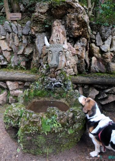 Milka haciendo amigos en Jardins d'Artigas