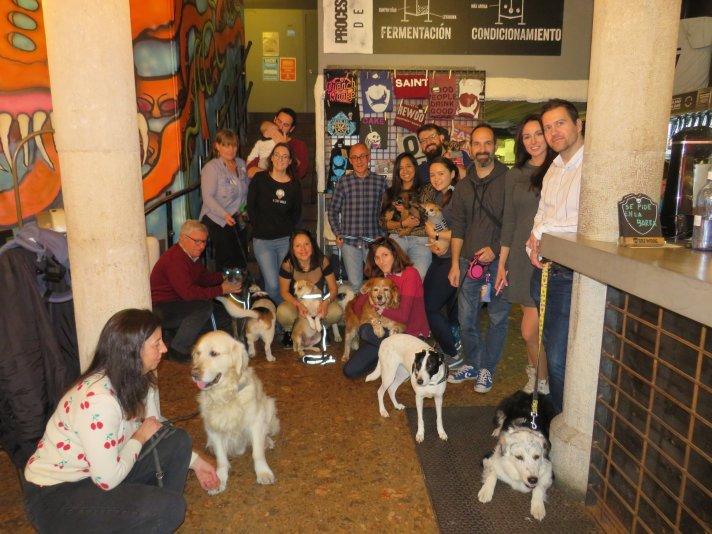 catas y degustaciones de cerveza con perros en grupo, ocio Petfriendly