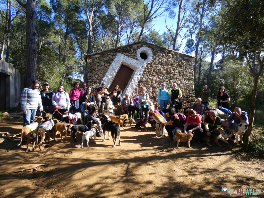 excursión con perros, palamós