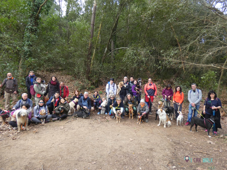 excursión canina con calçotada en grupo