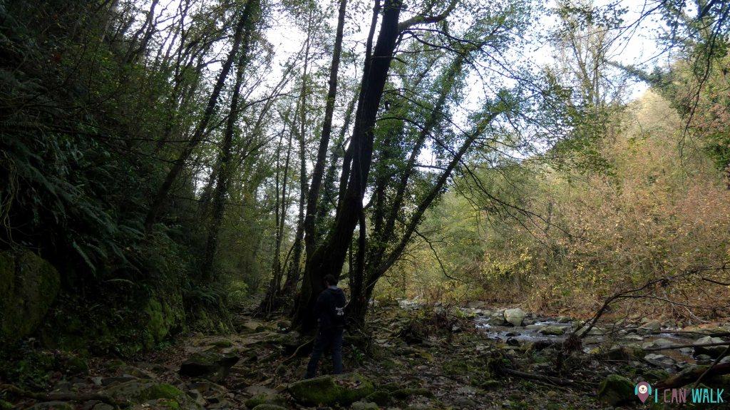 zona río